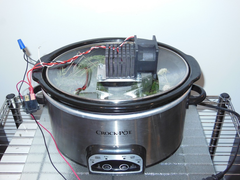Slow cooker distillation